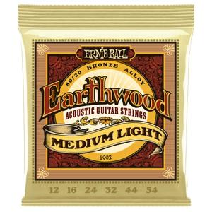Ernie Ball Earthwood 12-54