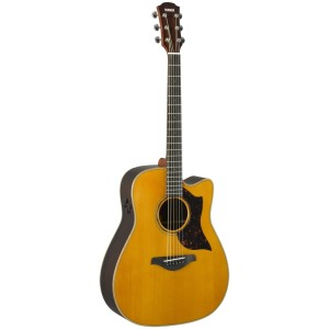 Semi-Acoustic Guitars